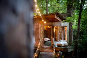 Secluded-Intown-Treehouse