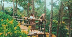 Cảm nhận sự bất tận từ núi rừng trong thung lũng vàng Đà Lạt | VNTOUR